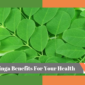 Moringa Benefits For Your Health
